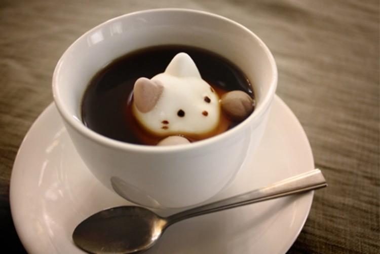 Котик из пенки в чашке