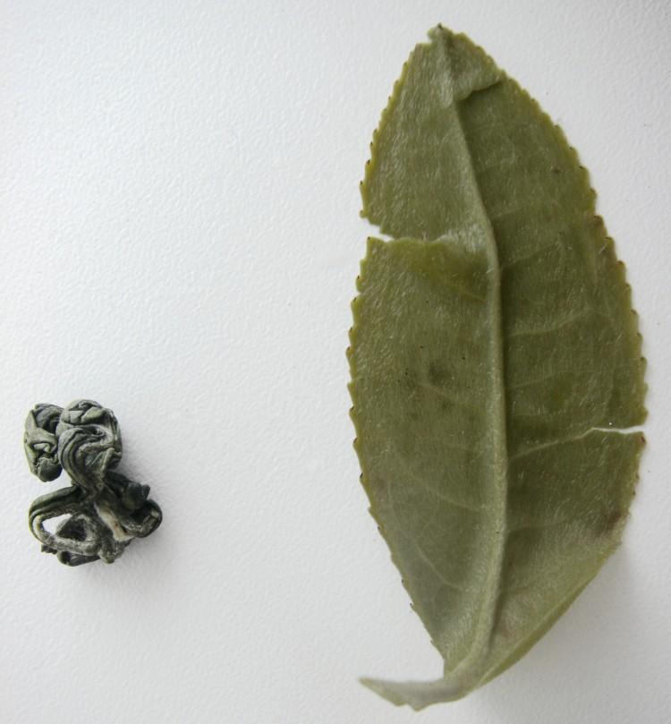 Сухой и мокрый листики улуна