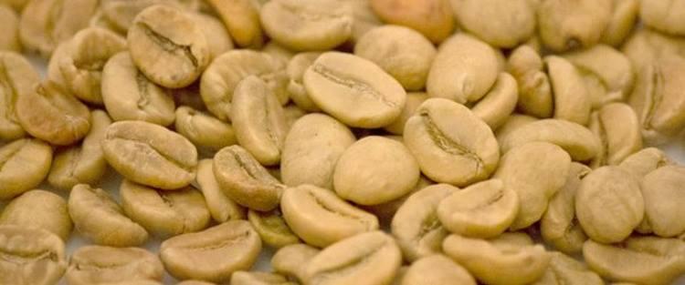 Зерна белого кофе