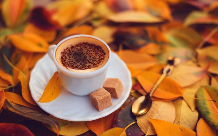 Кофе Экзотика