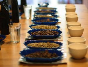 Сорта кофе для дегустации