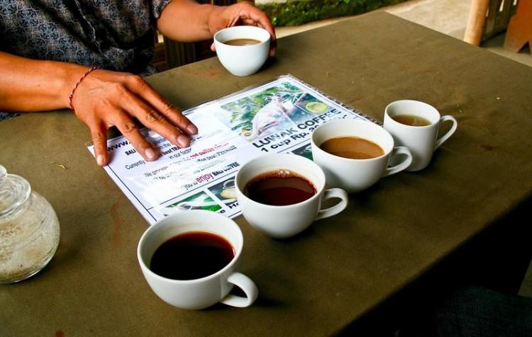 Этап дегустации кофе