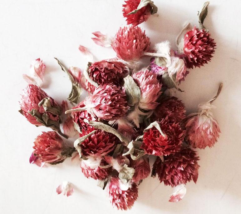 Сухие цветки клевера