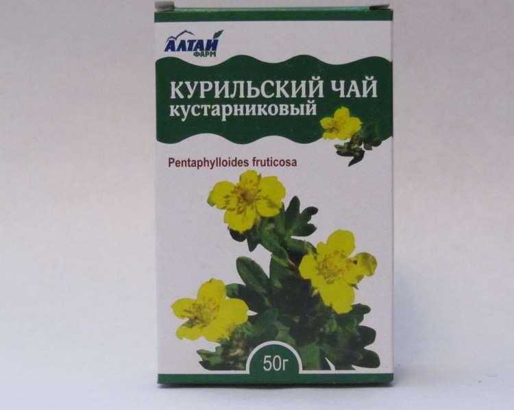 Аптечный курильский чай